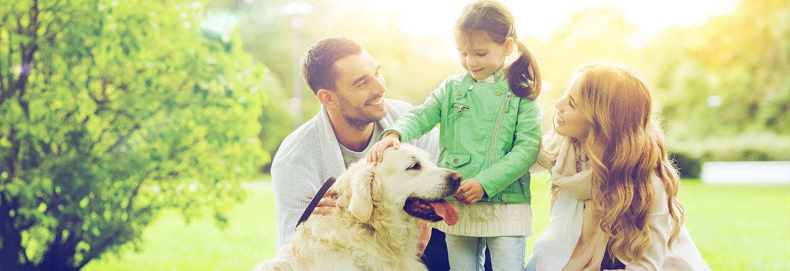 Mortgage Protection Advisor UK